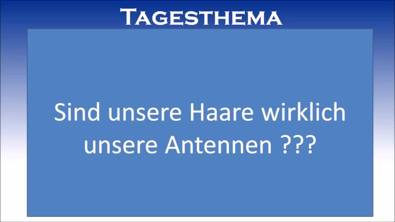 """Engelsburger Neuigkeiten für den 24. Januar 7528 nEFS mit dem Tagesthema """"Sind die Haare Antennen?"""""""